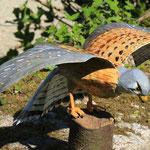 faucon peint 50 cm