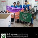 Grupo Scout Impeesa (Alicante)