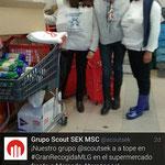 Grupo Scout SEK MSC (Malaga)