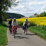Die Fahrt am 4. Mai geht an blühenden Rapsfeldern entlang in Richtung Rauschenberg..