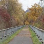 Am 9. November herrschen schon mehr braune als goldene Töne vor, hier bei Ebsdorf.