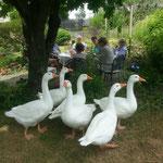 Am 9. Juli kehrten wir bei Frau Findt in Sichertshausen ein ...