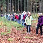 Wanderung im Roßberger Wald