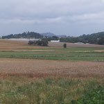 Zwischen Ebsdorf und Heskem ist es noch trocken, doch vor Moischt gibt es einen Guss.