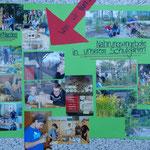 Präsentation: Plakat 2: Wildbienen - Was wir tun: Nahrungspflanzen & Nisthilfen