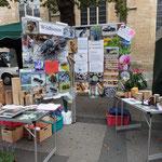 Wildbienen, Poster, Bilder, Wildbienenhäuser, Nahrungspflanzen gehören zusammen