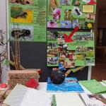 Die Präsentation: Plakate, Nisthilfen, Nistmaterial und der Hohlblockstein