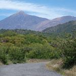 Der Teide mit Pico Viejo