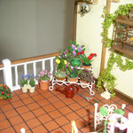 Lavanda, lilas y fresas de Mavi Fernández: Minimacetas, claveles de Rosada; rosas y tulipanes de Mariví Sacristán