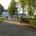 Training: 16.07.2014