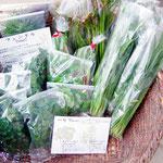 5月の野菜はこんな感じです。ニラやパセリ、フェンネル、わらび、アスパラ、などなど