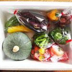 8月9月はうれしい夏野菜の季節ですね。ちほう発送便もこんなに色鮮やになります。この季節にはマーケットにも出品します。