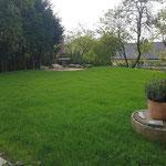 Ein paar Wochen später ist der Rasen schön grün und lädt zum spielen und verweilen ein.