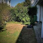 Die Ausgangslage. Der Garten soll pflegeleicht werden und die Pflanzen müssen weiter nach oben.