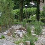 Ruderalfläche mit Weidenzaun, Ast- und Steinhaufen