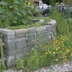 Sandsteintrockenmauer mit einheimischen Kräutern