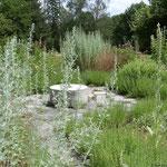Kräutergarten - Treffpunkt für viele Insekten