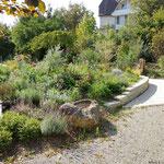 Kräuter- und Heilpflanzen