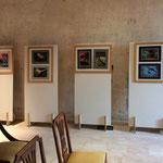 Palazzo Passi, Villongo; Sala C, 2 - Ciro Indellicati - Polisèmica