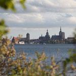 Heimlich beobachtet: das Treiben der Hansestadt