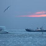 Das Zischen der Sonne, wenn sie in der Ostsee erfriert