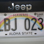 Auto - unsere Nummer in Maui