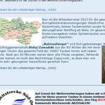 http://www.brieftauben-markt.de/