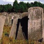 Der jüdische Friedhof von Brody