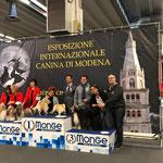 Zuchtgruppen 3.Platz in Modena