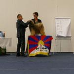 Beide Tage CAC und somit auch den Österreichischen Champion Titel erhalten