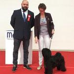 Im-chi gewinnt das BOB in Cesena