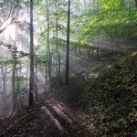 Jena, Nebel und Sonnenaufgang in den Kernbergen