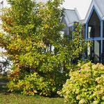 Herbststimmung am Adventhaus