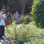 Unterwegs im Bibelgarten