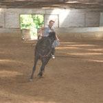 """""""Styling am Pferd"""""""