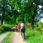 Balade en vélos