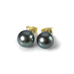 Klassische, schlichte Ohrstecker in Gelbgold mit Tahiti-Perlen