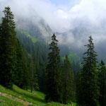 Alp Tumli und Einstieg im Blick, von Birchboden aus