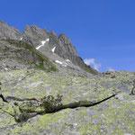 Profil Südgrat Hochschijen