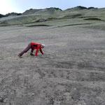 Spass an den flachen Azalee Beach Platten