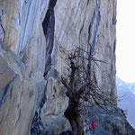 Klettergarten Prato