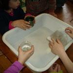 animation eau domestique