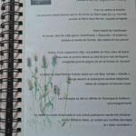 Sur mon carnet de promenade : le menu de Guillaume VIALA