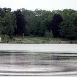 Blick vom Schwielowsee, gut zu erkennen: die betonierte Uferbefestigung. Nach unserem Dafürhalten fehlen die Pappeln.