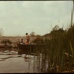 Ein beliebtes Ziel für schnelle Badeausflüge war der Bootsanleger des benachbarten Schlosses. 1971.