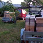Bienen sind transportfertig