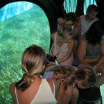 Sous la mer en toute sécurité