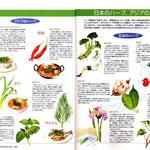 清流出版発行 月刊「清流」