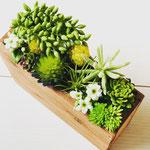 多肉のプランター No2266 ¥4.000 サイズ:W6cm D21㎝ H19.5㎝ 造花なので手入れ不要、長方形、窓辺にも飾れます