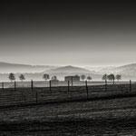 silent land II